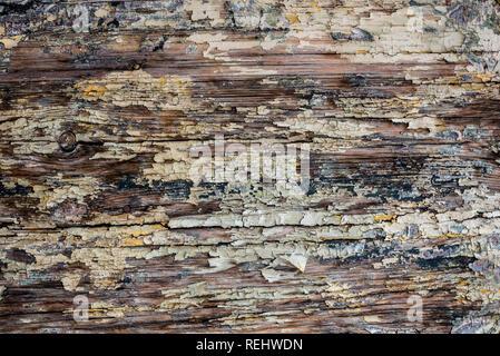 La texture de la vieille peinture sur planches de bois, l'arrière-plan Banque D'Images