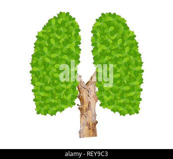 Vert feuilles poumons comme symbole de l'écologie de l'environnement propre isolated on white Banque D'Images