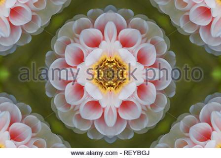 Généré par ordinateur comme ornements symétriques d'un arrière-plan. Texture multicolore. Banque D'Images