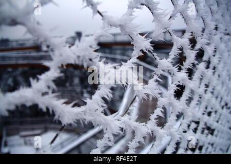Texture givrée sur la clôture en Forêt-Noire. Tour de l'arbre à Bad Wilbad. Frosty clôture. Banque D'Images