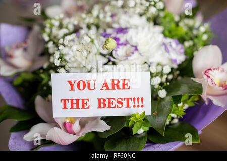 De belles fleurs de printemps bouquet avec vous sont les meilleurs carte message.meilleure maman jamais. Je vous aime. Invitation pour la Fête des mères, félicitations.la Journée internationale des femmes. Flyer pour le 8 mars.Happy Valentines Day, cartes de Vœux Banque D'Images