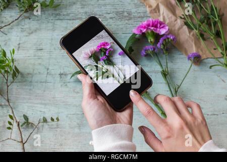 Woman's hands taking photo de fleurs avec smartphone Banque D'Images