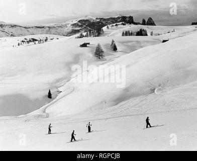 Alpe di Siusi, Bolzano Banque D'Images