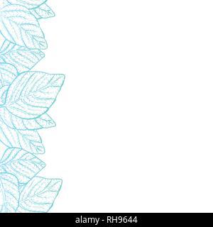 Vector background - nature feuilles border frame avec copie espace et fond blanc, moderne vert-bleu dégradé décolorées Banque D'Images