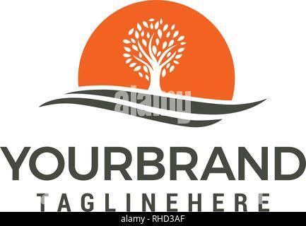 Logo soleil arbre modèle vecteur conception Banque D'Images