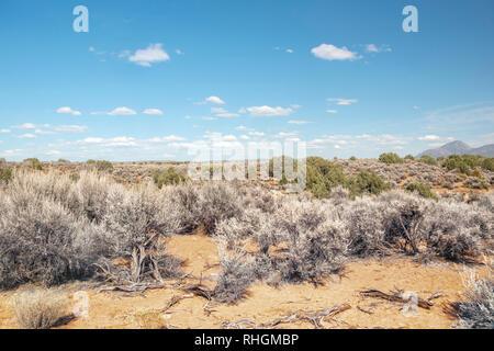 USA, Utah, le comté de San Juan, Hovenweep National Monument. La petite ruine Canyon Trail traverse une section slickrock avec Sleeping Ute Mountain je visibles Banque D'Images