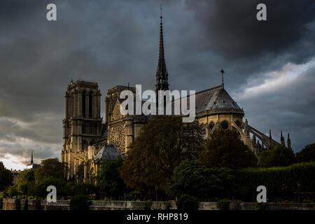 L'été à la cathédrale Notre-Dame de Paris, France