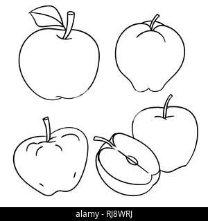 Ensemble d'Apples isolé sur fond blanc, l'encre à la main, style livre à colorier, pour l'éducation et de l'alimentation des concepts. Vector Illustration Banque D'Images