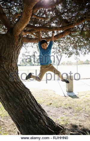 Garçon espiègle accroché tree in park Banque D'Images