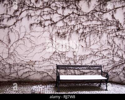 Un banc de neige en face d'un bâtiment avec une façade couverte de Taris pampres Banque D'Images
