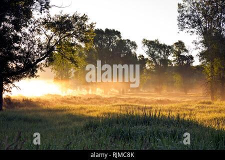 WY03316-00...WYOMING - soleil sur la brume du matin à Antelope Flats à Grand Teton National Park.