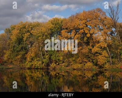 Paysage désolé d'arbres colorés et rivière à Wilanow royal park dans la ville de Varsovie en Pologne européenne Banque D'Images