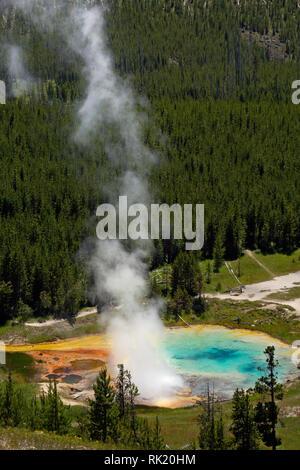 WY03400-00...WYOMING - Geyser impériale et coloré piscine dans le Midway Geyser Basin de Parc National de Yellowstone.