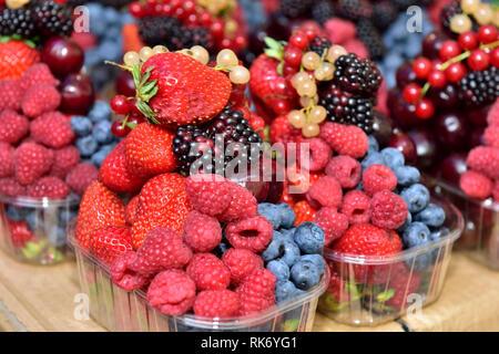 Fruits frais biologiques dans une vente de barquettes, fraises, mûres, les courants rouge, framboises, bleuets Banque D'Images