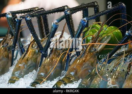 Gel de homard sur la glace Banque D'Images