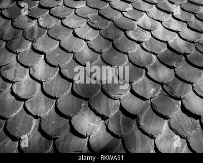 La texture des tuiles ardoise ronde qui ressemblent à des écailles Banque D'Images