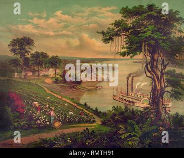'Sunny' du Sud, les Africains américains de coton Cueillette, Riverboat sur la rivière, Chambre de plantation en arrière-plan, Mississippi inférieur, lithographie, 1883 Banque D'Images