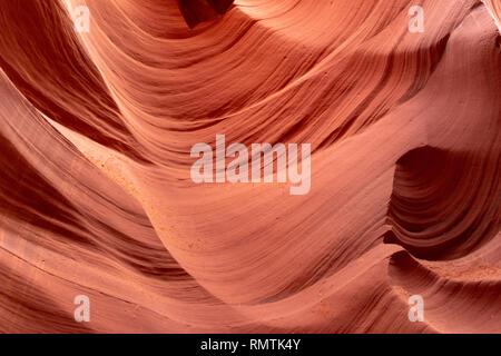 Lower Antelope Canyon - Visite guidée à la pittoresque, tordant, étroite, de grès et de murs en pierre calcaire de l'enroulement canyon fente incurvés par flash flood en Arizona