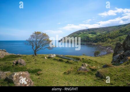 Peu visité Murlough Bay est considéré comme l'une des plus belles baies de la côte d'Antrim en Irlande du Nord, avec d'excellentes vues tout autour. Banque D'Images