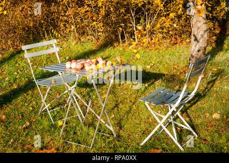 Table en bois avec une chaise, les pommes d\'automne et de ...