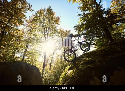 Silhouette de cycliste professionnelle équestre sur roue arrière sur le vélo du procès, un sportif faisant acrobatic stunt sur le bord du grand rocher dans la forêt de l'été journée ensoleillée. Concept de sport extrême