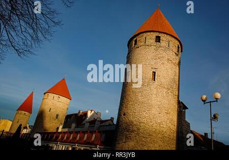 Les murs et les tours du château forteresse de la vieille ville de Tallinn, Estonie . Ciel bleu, remplir lune. L'Europe des attractions touristiques. États baltes.