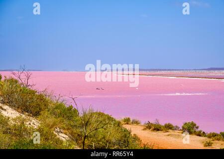 Plage du lac rose à côté de Gregory à l'ouest de l'Australie Banque D'Images