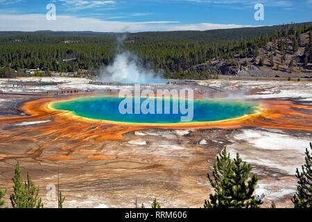 WY03858-00...WYOMING - Le Grand Prismatic Spring colorés Midway Geyser Basin dans le Parc National de Yellowstone.