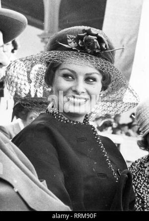 Sophia Loren, 20.9.1934, *, l'actrice italienne, demi-longueur, 1959 Additional-Rights Clearance-Info,--Not-Available Banque D'Images