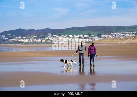 Un couple millénaire marchant un chien Springer Spaniel sur une mer de sable tranquille à marée basse en hiver. Woolacombe, North Devon, Angleterre, Royaume-Uni, Grande-Bretagne Banque D'Images
