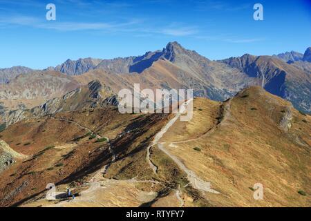 La nature en Pologne - Parc National des Tatras. Czerwone Wierchy de sentier de randonnée. Banque D'Images