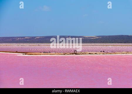 Différentes parties du Lac Rose à côté de Gregory à l'ouest de l'Australie Banque D'Images