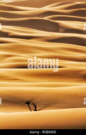 Les vagues sans fin des dunes de sable de masses dans la zone déserte de Stockton Beach dans Worimi Parc national sur la côte du Pacifique de l'Australie - résumé vertical fragment. Banque D'Images