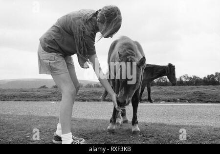 Jeune fille à propos de 10/11, l'alimentation de l'herbe pour un poney, Dartmoor, dans le Devon, Royaume-Uni.. Film en noir et blanc photographie, vers 1994. Parution du modèle Banque D'Images