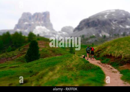 Col Falzarego, Cortina d'Ampezzo, province de Belluno, Dolomites, Italie Banque D'Images