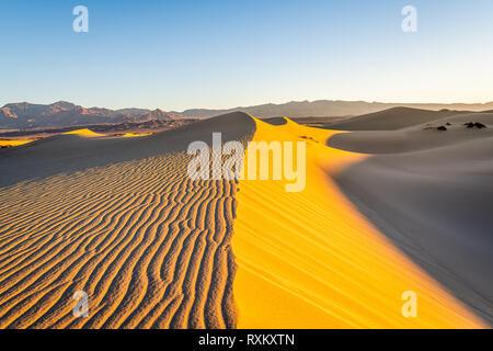 Randonnée matinale dans les dunes de sable plat Mesquite