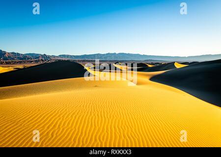 Mesquite Flat dunes de sable de l'heure d'or