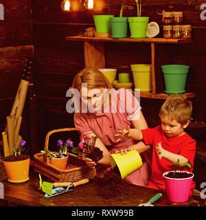 Concept de replantation. Mère et fils la replantation fleur en pot. La mère et l'enfant la replantation houseplant sol en noir ou de saleté. Préparation pour Banque D'Images
