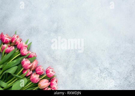 Pivoine rose tulipe sur fond de béton gris. Floral background with copy space pour le texte. Modèle de conception, d'accueil ou de carte d'invitation Banque D'Images