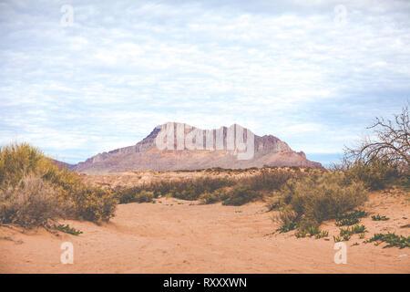 Soft matin lumière tombe sur des montagnes du désert de l'Arizona.