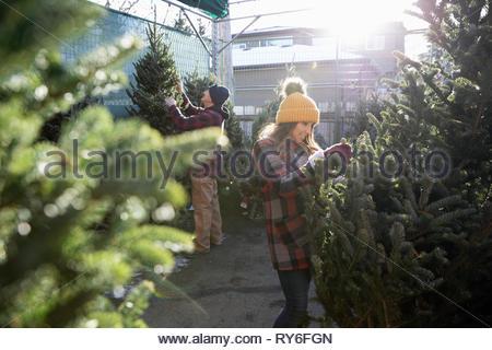 Woman shopping for arbre de Noël Marché de Noël Banque D'Images