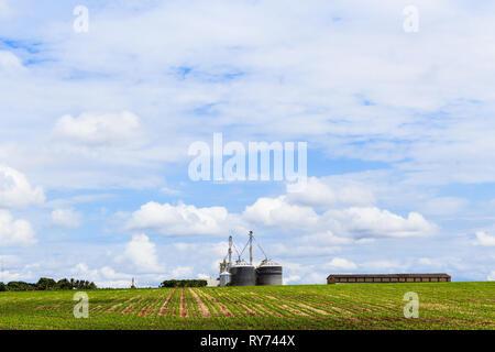 Entrepôt de grains de soja en plantation dans ciel bleu. Le Brésil, l'Amérique du Sud. Banque D'Images