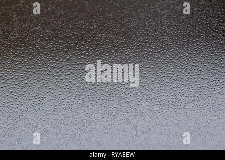 Vue macro d'une condensation de l'eau perle sur une vitre Banque D'Images