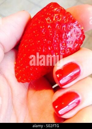 Strawberry a tenu à la main avec des ongles peints en rouge Banque D'Images