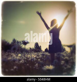 Girl soulève des armes dans un champ de marguerites Banque D'Images