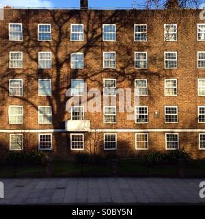 Ombre d'un arbre dans un bloc de logements sociaux à Stamford Hill, Hackney, Londres