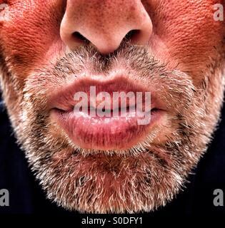 Mâle adulte avec soufflage barbe kiss Banque D'Images
