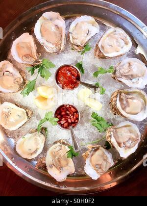 Les huîtres crues sur la demi-coquille platter Banque D'Images