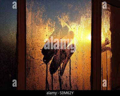 Lever du soleil par condensation sur la fenêtre Banque D'Images