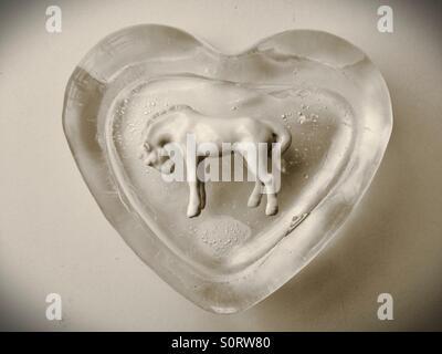Un cheval blanc du prince dans un bloc de glace en forme de coeur.